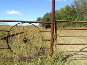 Izzy's gate